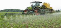 Pesticides : Effets sur la santé - Une expertise collective de l'Inserm | L'actualité de la sécurité sanitaire | Scoop.it