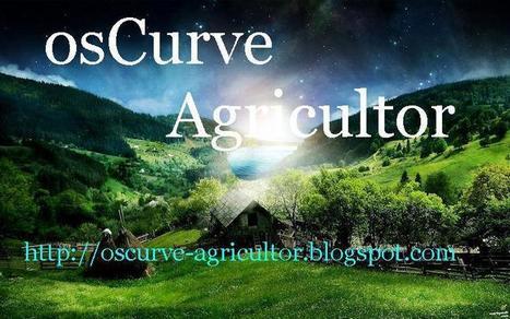 osCurve Agricultor: Cultivos Hidroponicos | Cultivos Hidropónicos | Scoop.it