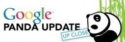 Google Panda : Ce qu'il faut définitivement retenir... [infographie] | Référencement internet | Scoop.it