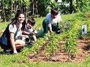 Home - El Nuevo Día   Urban Farmers Punto Com   Scoop.it