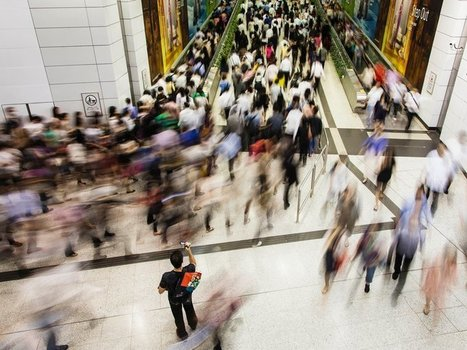 Crowds Are Much Smarter Than We Suspected | Pierre Levy | Scoop.it