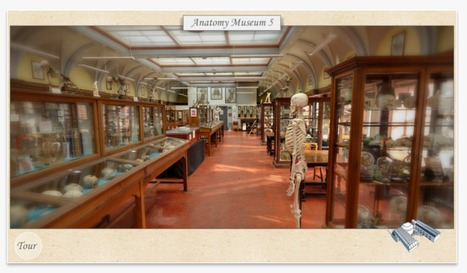 Anatomical Museum launches 3D app | The University of Edinburgh | Libraries and eLearning | Scoop.it