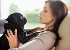 En 10 años hablarás con tus mascotas - Contexto | Animales | Scoop.it