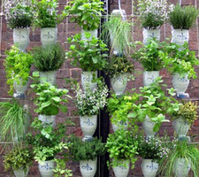 Windowfarms™ | Vertical Farm - Food Factory | Scoop.it
