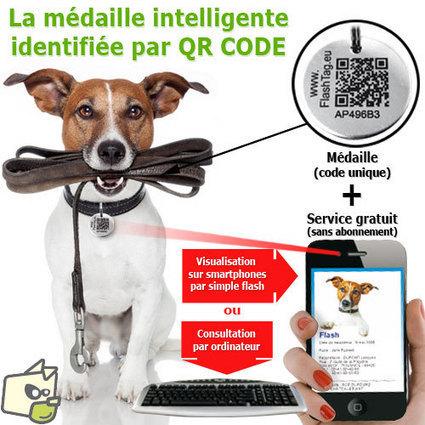 Médaille intelligente gravée QR CODE / identité chien et chat | De la bonne utilisation des QR-Codes | Scoop.it