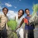 """Los estudiantes reflexionan sobre el hambre en """"Conectando Mundos"""" de Intermón   Cooperando   Scoop.it"""