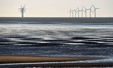 Green bonds market grows by 60% in a year | Sustainable Futures | Scoop.it