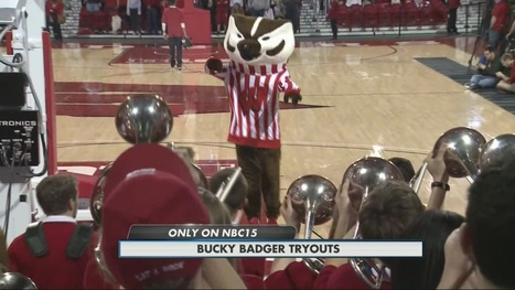 Becoming Bucky: What it takes to be Wisconsin's favorite mascot - WMTV | Mascots in the news | Scoop.it