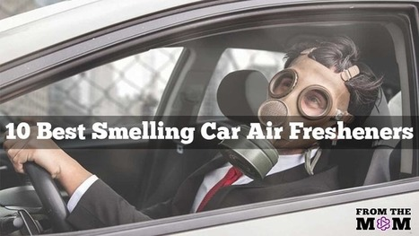 Top 10 Best Smelling Car Air Fresheners 2016 | Hot news | Scoop.it