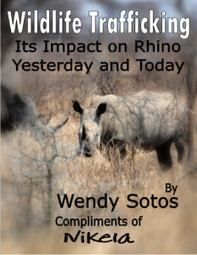 Rhinos of Africa Battle for Life | Wildlife Trafficking: Who Does it? Allows it? | Scoop.it