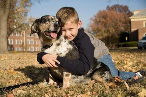Study links dog ownership to autism benefits | Article Library for Autism | Scoop.it