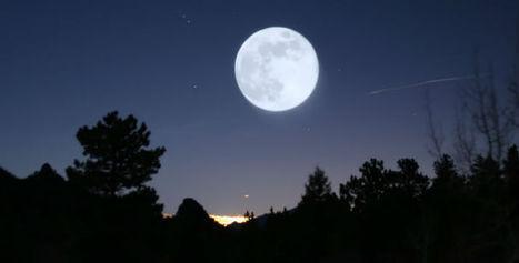 Seguite i ritmi della Luna. Farete la cosa giusta al momento giusto ... | Coltivare l'orto | Scoop.it