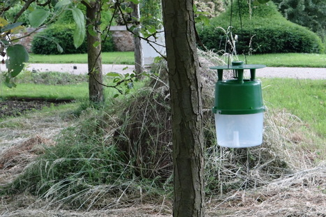 Petit lexique des pesticides | Environnement, paysage et biodiversité | Scoop.it