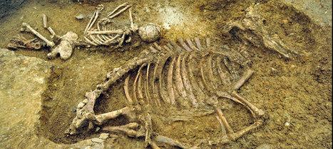 Anglo-Saxon woman buried with a cow | Mérovingiens et cie | Scoop.it