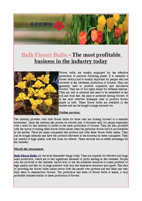 Bulk flower bulbs- the most profitable business in the industry today - PDF | Flower Bulbs | Scoop.it
