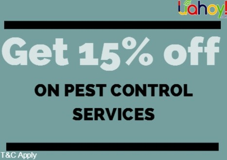 FAST CARE INDIA PEST CONTROL PVT LT   Free Coupon Deals Near by your city   Scoop.it
