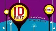 ID Buzz : le programme court de l'innovation en Pays de la Loire | La veille de Ouest Médialab | Scoop.it