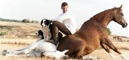 Santi Serra, jeune dresseur espagnol de chevaux | Equum.fr | Scoop.it