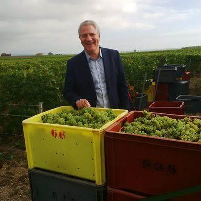 Champagne Alfred Gratien - Timeline | Facebook | Actualités oenologie et gastronomie en Champagne | Scoop.it