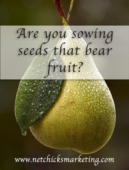 Are you sowing seeds that bear fruit? | Business Success | Scoop.it