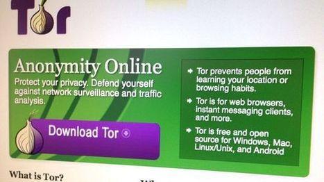Anonymität im Netz: Forscher entdecken Schnüffler im Tor-Netz | Sicherheit | Scoop.it