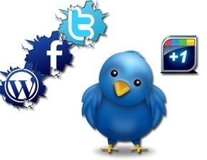 BuySeoSolutions.com | | BuySeoSolutions.com | twitter followers | Scoop.it
