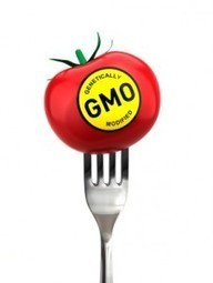USDA Decides the Current Rush to Rubber-Stamp GMO Foods Is Too Slow! limiting public comment | YOUR FOOD, YOUR ENVIRONMENT, YOUR HEALTH: #Biotech #GMOs #Pesticides #Chemicals #FactoryFarms #CAFOs #BigFood | Scoop.it