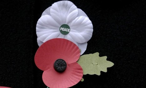 Fury after Lottery fund snubs Royal British Legion... but awards £95,000 to 'white poppy' conscientious objectors' scheme | Race & Crime UK | Scoop.it