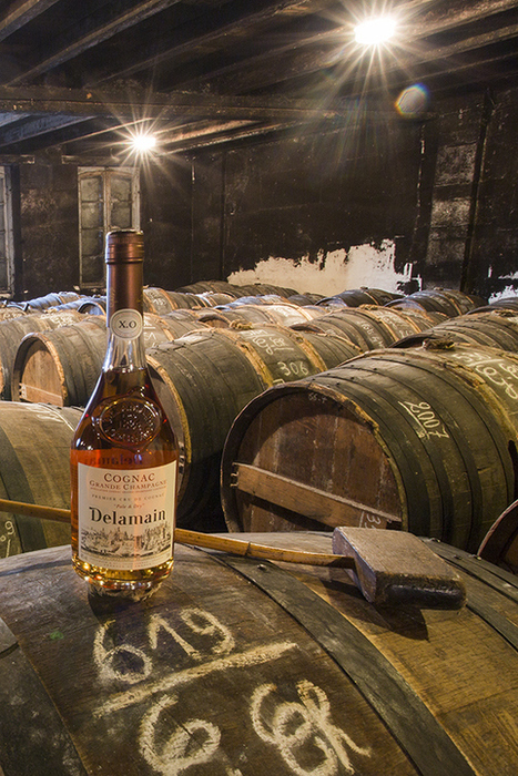 Visiting a Cognac Trading House | The Cognac and its vineyards | Scoop.it