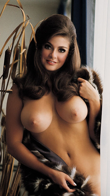 Cynthia Myers | Busty Boobs Babes | Scoop.it