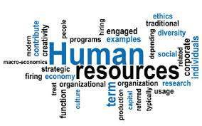 Human Resource Assignment   Assignment Services   Scoop.it
