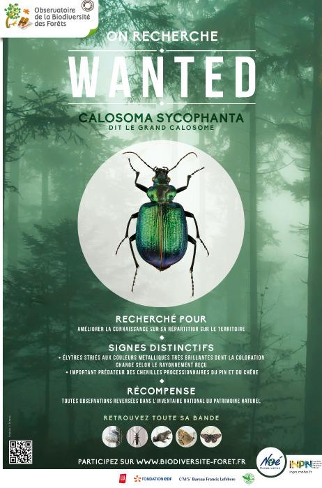 Les outils de l'OBF : Les affiches et le flyer du programme | Ecology view | Scoop.it