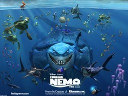 Finding Nemo Isn't Easy: Film's Stars Threatened with Extinction | Guilty Planet, Scientific American Blog Network | Marine Biology | Scoop.it