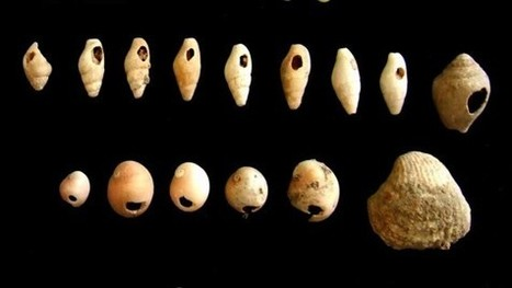 From foraging to farming: the 10,000-year revolution | World Neolithic | Scoop.it