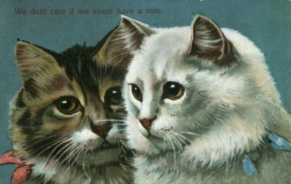 Woman-as-Cat in Anti-Suffrage Propaganda » Sociological Images | Women's Rights in America | Scoop.it