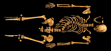 Amazing photo of King Richard III's tiny, curved spine proves Shakespeare was wrong | Merveilles - Marvels | Scoop.it