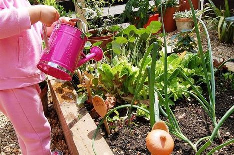 Pre-School Gardening Club - Weekly Activities Plan - little green fingers | Investigation into Australian Food and Fibre Production, Sustainability, Agricultural Commodities and Nutrition | Scoop.it