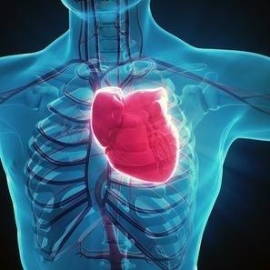 Insuffisance cardiaque : vers l'utilisation de la thérapie génique | Santé (maladies - infections) | Scoop.it