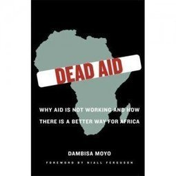 Realsociology » Blog Archive » A summary and criticism of Dambisa Moyo's assertions in Dead Aid | IBDevelopment | Scoop.it