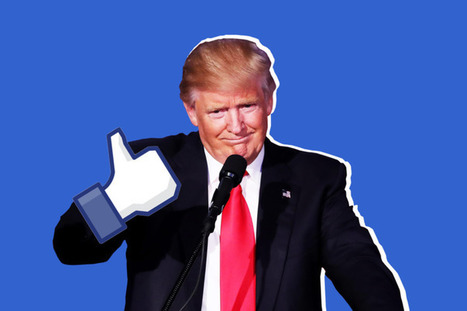 The 'Filter Bubble' Explains Why Trump Won and You Didn't See It Coming | Web 2.0 et société | Scoop.it