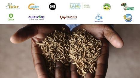 Levons-nous pour les droits fonciers des femmes! | Questions de développement ... | Scoop.it