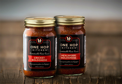 You can soon eat mealworm pasta sauce in Toronto | Entomophagy: Edible Insects and the Future of Food | Scoop.it