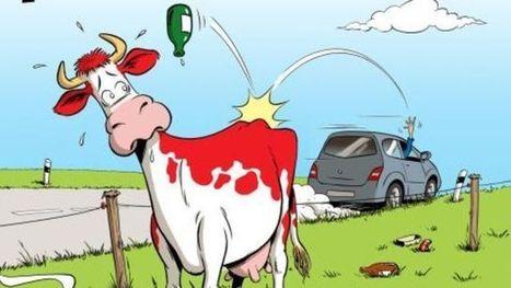 Les paysans se mobilisent contre les déchets sauvages | T4 - Citoyenneté, liberté, solidarité | Scoop.it