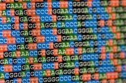 The Reimbursed Personal Genome----Five Years Away? | Billion Genomes Project | Scoop.it