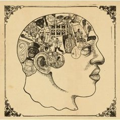 Oscillatory Thoughts: How to be a neuroscientist   Inspirational Articles   Scoop.it