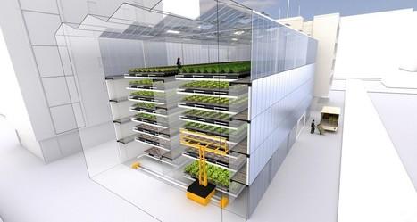 Agriculture urbaine, bâtiment à énergie positive, gare souterraine, vitrine numérique... Quatre projets futuristes | Agriculture urbaine et rooftop | Scoop.it