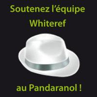 Guide du référencement naturel | Pandaranol Blog | Référencement SEO consultant | Scoop.it