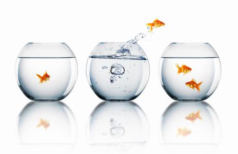 10 Principles of Change Management | Inspire to Change | Scoop.it