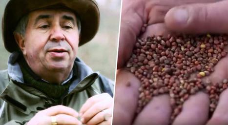 [ Reportage ] Soigneurs de terres : Claude et Lydia Bourguignon témoignent | Planete DDurable | Scoop.it