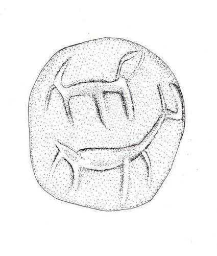 Un niño encuentra un antiguo sello de hace 3.000 años en Jerusalén - Arqueología, Historia Antigua y Medieval - Terrae Antiqvae   Arqueología, Historia Antigua y Medieval - Archeology, Ancient and Medieval History byTerrae Antiqvae (Grupos)   Scoop.it